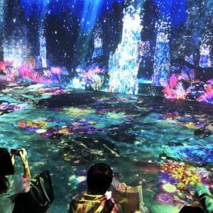 横浜駅に光の海!?「光の深海展 オーシャン バイ ネイキッド」アソビルで期間限定開催