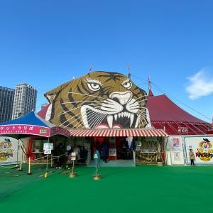 木下大サーカスの座席表はどうなってる?横浜公演【体験レポ】場所やアクセスも紹介!チケットはコンビニで買える