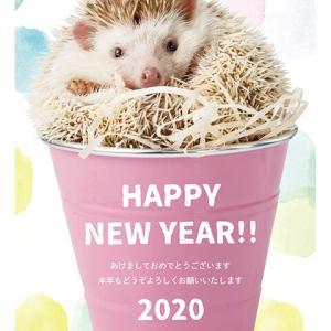 2020年謹賀新年!