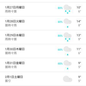 ずっと雨(´;ω;`)
