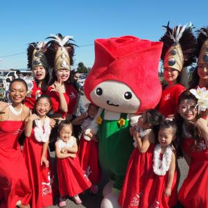 ケアコム収穫祭
