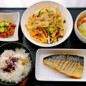 鯖の塩焼&ふんわり卵炒めと胃カメラとバケツ猫
