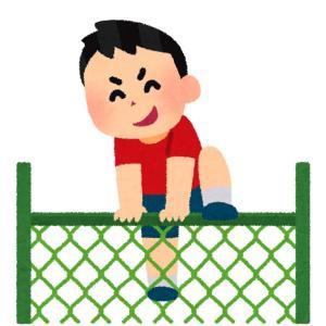 虫取りいって死亡【フェンスの切れ目】