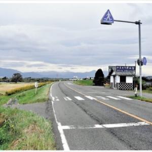 【田舎暮らしは危険】田舎の横断歩道