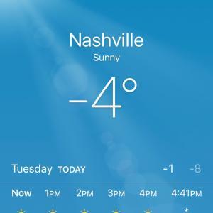 寒すぎて、自宅勤務!