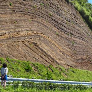 【伊豆大島】地層大切断面の駐車場はどこ!cafeメルシーも訪れてみた。