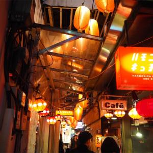 【おれ的吉祥寺観光】ぶらぶら散歩してきた。ハモニカ横丁は美しい。