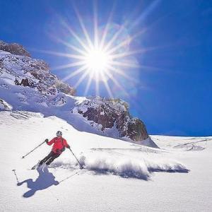 スキージャーナル倒産の真相