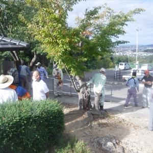 9月27日、里山作業再開です