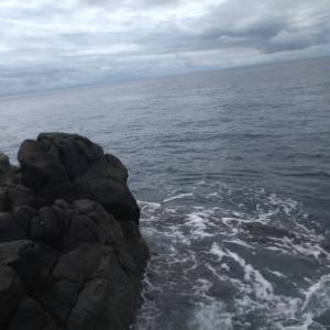 海の日! 石鯛祭り    part2