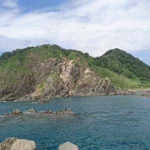 初夏の粟島石鯛