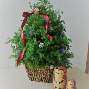 【花】大人クリスマスツリーが超素敵!!