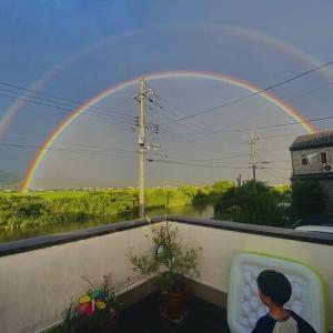 虹 くっきり