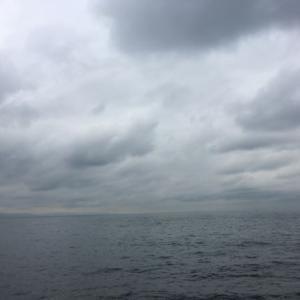 10月29日 雨の後の泉南エギング&アジング釣行