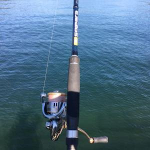 エギングロッドでもアジングはできる!おすすめの釣り方をご紹介