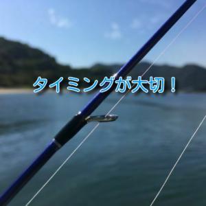 海釣りが上手くなるコツはタイミングを意識すること