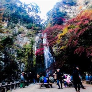 まだ間に合う紅葉、関西なら箕面の滝がオススメ!大阪市内から車ですぐ行ける!