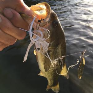 やっぱり釣れなきゃ楽しく無いよ。