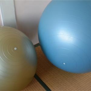 【椎間板ヘルニア】術後のリハビリに体幹トレーニング機器はちょっと