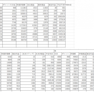5月分の資産状況(簡易)