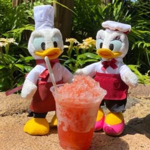 ディズニーシーで暑い日にはひんやり本格ストロベリーのシェイブアイス!