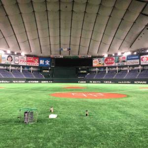台湾と日本の親善草野球大会「Kusa1トーナメントin東京ドーム」