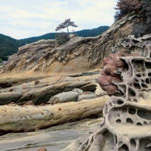 写真紀行 竜串海岸(高知県土佐清水市)