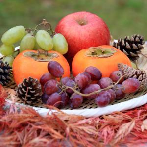 リンゴのプロシアニジンの体脂肪減少効果あり!