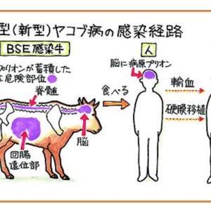 ★重要★コロワク被害の本質はエイズ+狂牛病+血栓のトリプルパンチ!