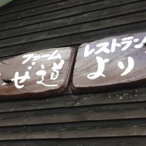 北海道グルメ⑥ 富良野カレー あぜ道より道