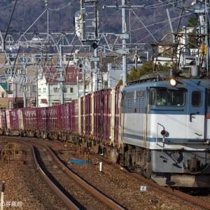 さくら夙川 (1)  ~冬の朝日を浴びるEF65~