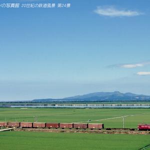 第24景 八郎潟の緑の絨毯