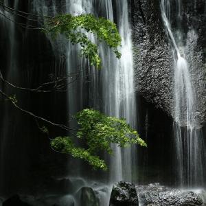 達沢不動滝へ今年初めて行ってきました。