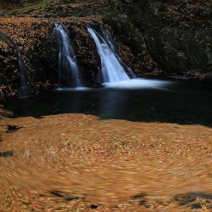 落ち葉がいっぱい龍神様の滝