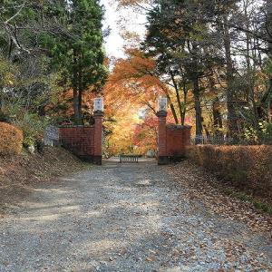 紅葉に彩られる天鏡閣と迎賓館。
