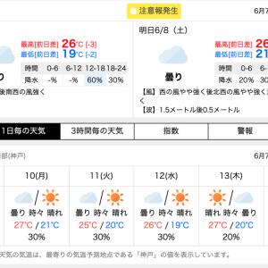 枠順発表〜(● ˃̶͈̀ロ˂̶͈́)੭ꠥ⁾⁾ 2019マーメイドステークス‼️