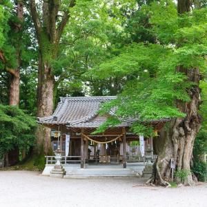 松阪市飯高町にある水にまつわる水屋神社はデカイ赤樽と大楠などの巨木がそびえ立つパワースポット