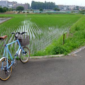 我が家の自転車置き場の現況!?