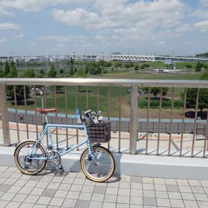 ご近所ポタ  横浜でさえ廃屋目立ちますから…