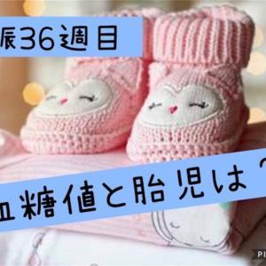 妊娠36週目 入院2週間目の胎児と血糖値。低血糖と罪悪感が・・❗️