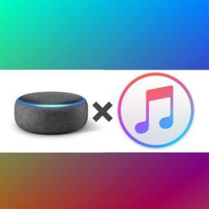 Amazon Echo Dot で Apple music を聞く方法!「アレクサ!Apple Musicで音楽流して!」