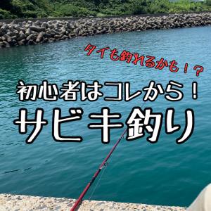 【初心者向け】サビキ釣り!親子でもカップルでも楽しめる!