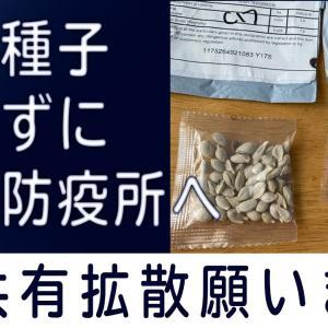【謎の種子】狙いは何か❓日本各地でも続々報告❗️送付元は中国...