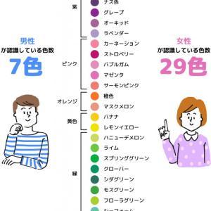 【カラーの世界】男は7色、女は29色を識別できると判明⁉️