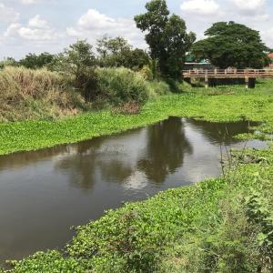 年中涸れない流れない川…