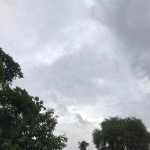 状況的に雨季入りしましたね…