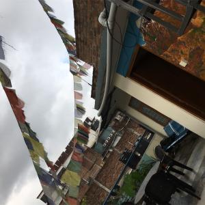 🇳🇵やっぱり雨季は辛いよ…ネパール観光(カトマンズ2日目)