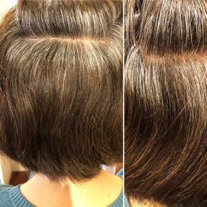 酸化毛から還元毛 白髪から黒髪へSO-CARE!