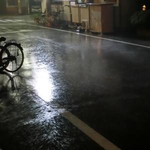 雨は降る降る