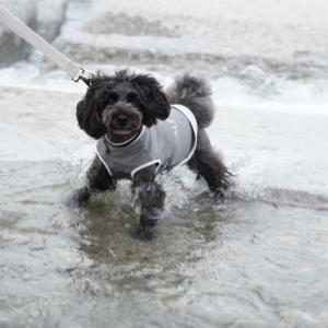 川で濡れて…衣付